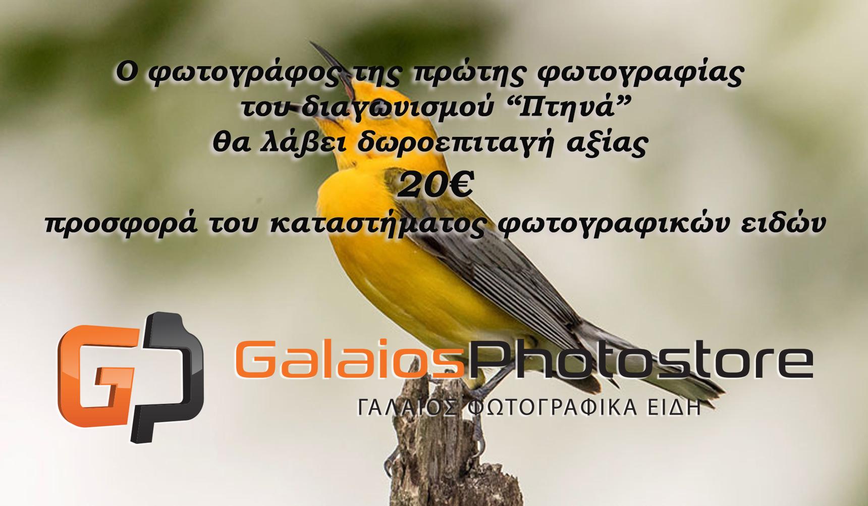 """Φωτογραφικός διαγωνισμός με θέμα """"ΠΤΗΝΑ"""""""