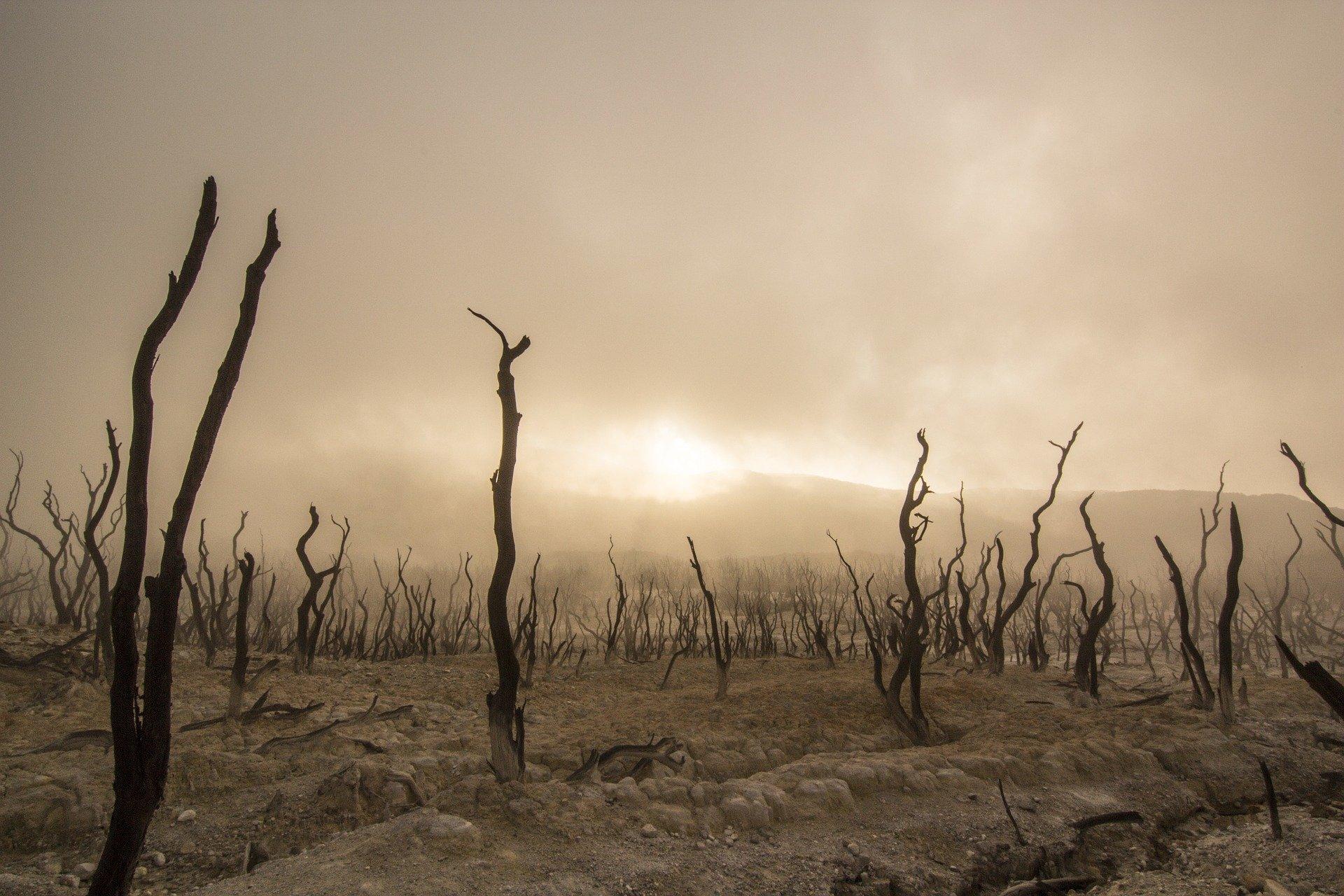 Κλιματική Αλλαγή, η ευθύνη όλη δική μας…της Αλεξάνδρας Κοφινιώτη